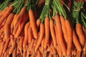 CarrotBunches